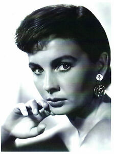 ACTRESS JEAN SIMMONS 8 x 6 BLACK & WHITE PRESS PHOTOGRAPH