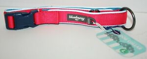 Blueberry Pet Summer Hope 3M Reflective Padded Dog Collar Neoprene Nylon - LARGE