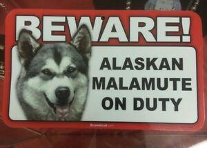 Laminated Card Stock Sign- Beware! Guard Alaskan Malamute On Duty