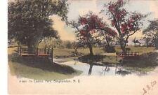 Postcard In Casino Park Binghamton NY