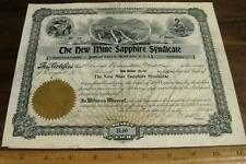 THE NEW MINE SAPPHIRE SYNDICATE 1901 Stock Certificate Yogo Gulch Montana Mining