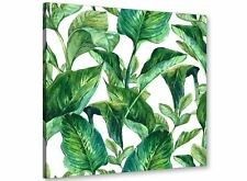 Green Palm Tropical Banana Leaves Canvas Wall Art Print - 49cm Square - 1s324s