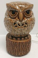 Electric Owl Accent Lamp/ Aromatherapy/ LED
