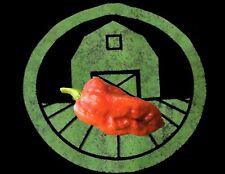 25+ 7 Pot Madballz Pepper Seeds (superhot organic chili, chile)