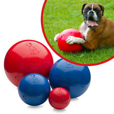 Halti Boomer Ball Indestructible Durable Tough Dog Puppy Toy (Colour may vary)
