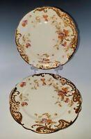 2 AYNSLEY Bone China BREAD or TEA PLATES, Orange Flowers Circa 1895