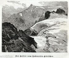 ORTLES DAL RIFUGIO TABARETTA. Alpi. Südtirol.Tirolo. Bolzano. Stampa Antica.1876