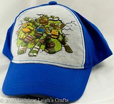 NWT Boy's Ninja Turtles Multi Color Baseball Cap Hat Nickelodeon Gray Blue Green