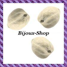 Graine Lumbang Coloris ivoire x5