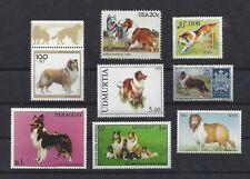 Dog Postage Stamp Collection Art Photo Body Studies Rough Coated Collie 8 x Mnh