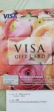 price of 100 Visa Gift Card Travelbon.us