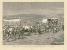1881 Antique Print - SOUTH AFRICA TRANSVAAL BOER WAR BRONKERS SPRUIT (239)