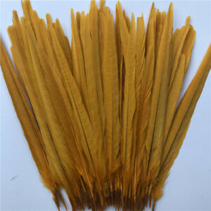 High quality 10-500 pcs natural Pheasant tail feathers 10-12 inches / 25-30 cm