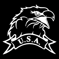 USA American Patriotic Eagle Car Truck Window Wall Laptop Vinyl Decal Sticker.