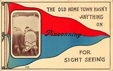 """""""The Old Home Town"""" Pinconning Michigan~For Sight Seeing~Pennant Postcard~1912"""