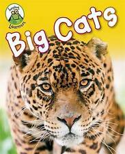 """VERY GOOD"" Big Cats (Leapfrog Learners), Lynch, Annabelle, Book"