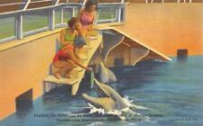 Fl, Florida Marineland Oceanarium~Bathing Beauties Feeding Porpoises c1940's