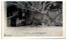 Museum and Tavern, H.A. Henkelmann, Taxidermist near Merrill, WI Postcard