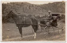 Real Photo Postcard Horse Pulled Carriage in Montana~107187