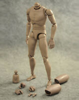 1/6 scale Male Body Narrow Shoulder 12inch Action Figure Nude Muscular Body Toys