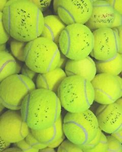 4 6 8 10 Used Tennis Balls. Branded. Great For Dogs. Sanitised. GREAT CONDITION.