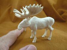 (moose-14) white Moose Elk bull of shed ANTLER figurine Bali detailed carving