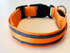 LED DOG COLLAR Rechargeable battery Reflective Strip Safety lighted collar