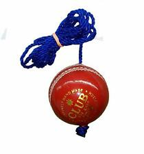 Diablo Club Leather Hanging Practice Cricket Ball Pack of 1 Us