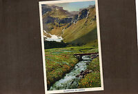 Switzerland Murren Blumenthal 1930's tinted card unposted