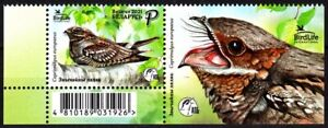 BELARUS 2021-04 FAUNA Animals: BIrd of the Year. Pair with LABEL, MNH