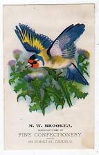 TOLEDO OHIO*M W BROOKER*FINE CONFECTIONERY*183 SUMMIT ST*VICTORIAN TRADE CARD #1