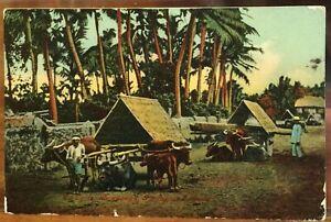 Philippines Postcard OX CARTS & Laborers Pampanga Huge Loads IPC 1919