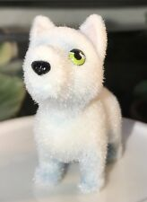 Snow in My Pocket: Arctic Wolf, Blanca