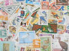 STAMP Topical 《BIRDS》 100pcs lot OFF paper philatelic collection thematic