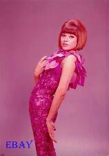 Fran Jeffries 1964 Vintage 5  X  7  TRANSPARENCY