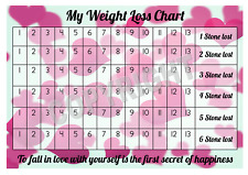 A4 Weight Loss Chart - 6 Stone - 1 Sheet of stickers - Hearts Design - Target
