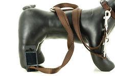 Nylon-Hundeführleine, Hundetrainigsleine, 20mm x 2m, mehrfach verstellbar, braun