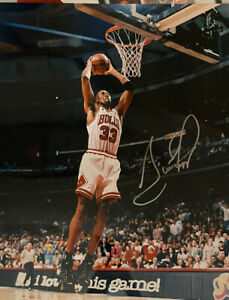 Chicago Bulls Signed Scottie Pippen  16x20 Photo 1on 1 Inc