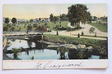Old UDB postcard VIEW OF WEST SIDE PARK, PATERSON, N.J.