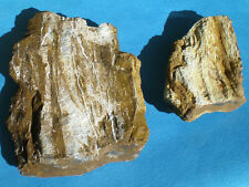 Lot Of 2 Pieces Of Colorado Petrified Wood - Large & Attractive