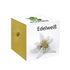 Inventive Trading Ecocube Edelweiß - Von Extragifts
