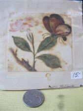 Vintage Print,BUTTERFLIES,Hand Painted,Maria Haliburton,Signed