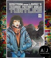 Teenage Mutant Ninja Turtles #11 VF/NM 9.0 (Mirage)