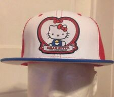 Hello Kitty Hat Ball Cap Strap Back New 40th Anniversary Sport Mens Adjustable