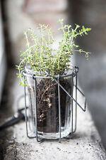 Ib Laursen Korb Halter Töpfe Hänger  Draht Gläser Utensilo Küche Blumen Pflanzen