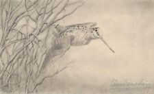 Leon DANCHIN Signed DRAWING Woodcock in flight 1920