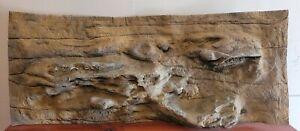 Used - Universal Rocks 48-Inch by 20-Inch Ledge Flexible Aquarium Background