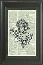 ORIGINAL Letter S Alphabet Vintage Dictionary Art Print Personalised Gift 540D