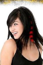 COLOR FIEND SET 2 CLIP IN HAIR EXTENSION 5 STYLES PARTY PUNK COSPLAY XMAS GIFT