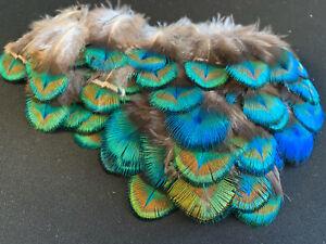 10pcs Rare Natural Green Blue Peacock Plumage Feathers DIY Art Craft Jewellery